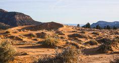 Coral Pink Sand Dunes | Walking Arizona