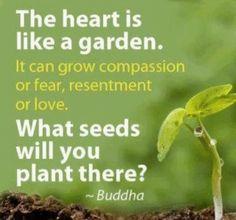 http://lmvus.com @sanjay_jerink @RomanJancic @Ninainthewoods @maryfarquhar @BigGoodJohn  #Kindness #Compassion