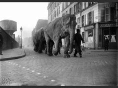 """Paris XX° siècle - """"L'Obs"""" s'associe à l'agence Roger-Viollet pour vous faire découvrir d'étonnantes photos d'archives de la capitale."""