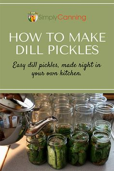 Pickle Recipe: Finally, I'm Getting the Crunch! - Tired of soggy pickles? This easy dill pickle recipe produces crunchy pickles…finally! Learn the -Dill Pickle Reci. Crunchy Dill Pickle Recipe, Crispy Pickles Recipe, Baked Pickles, Kosher Dill Pickle Canning Recipe, Dill Pickle Recipes, Canning Dill Pickles, Kosher Pickles, Home Canning Recipes, Pickled Okra