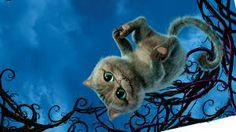 Résultats de recherche d'images pour « cheshire cat »