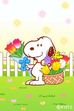 きせかえスヌーピー for iPhone images cartoon Snoopy Comics, Snoopy Cartoon, Peanuts Cartoon, Peanuts Snoopy, Happy Birthday Snoopy Images, Snoopy Birthday, Birthday Images, Charlie Brown Und Snoopy, Meu Amigo Charlie Brown