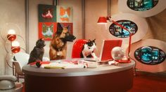 Who's Who In 'Cats & Dogs: The Revenge of Kitty Galore' | Earthlinggorgeous