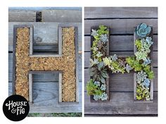 Wall-mounted Succulent Letter DIY Maybe all our initials for the back garden Hanging Succulents, Succulents Garden, Planting Flowers, Propagate Succulents, Dream Garden, Garden Art, Herb Garden, Garden Types, Garden Projects