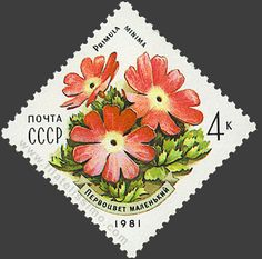 Soviet set of beautifully executed stamps of flowers Postage Stamp Art, Old Stamps, Vintage Stamps, Postage Stamp Collection, Flower Stamp, Small Art, Fauna, Stamp Collecting, Printables