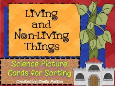 Living and Non Living Things {Science Picture Cards for Sorting}