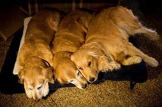 who said three's a crowd :)