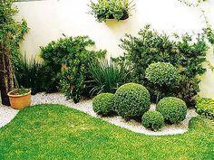 Plantas decorativas para jardines pequeños #plantasdecorativas
