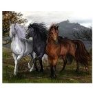 Arabian Horses Counted Cross Stitch Pattern Amazon Marketplace