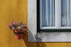 Window With a Vase
