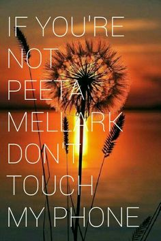Peeta mellark screenlock the hunger games