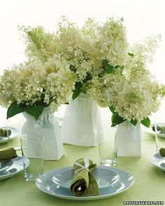 baby's breath with hydrangeas