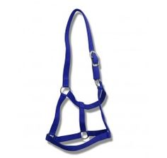 QUALITY NYLON ROYAL BLUE HEAD COLLAR WITH CHROME FITTINGS IN FULL, COB, PONY SIZES