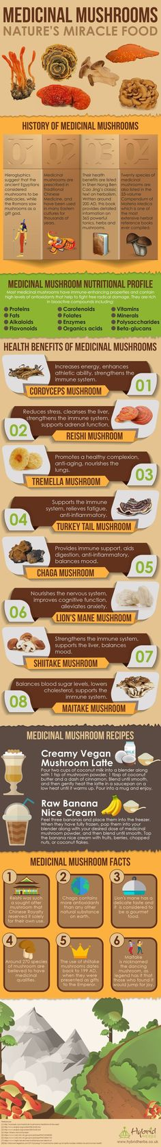 Medicinal Mushroom Health Benefits Infographic: Nature's Miracle Foods by angelina Herbal Remedies, Health Remedies, Natural Remedies, Vegan Nutrition, Holistic Nutrition, Healing Herbs, Medicinal Herbs, Natural Medicine, Herbal Medicine
