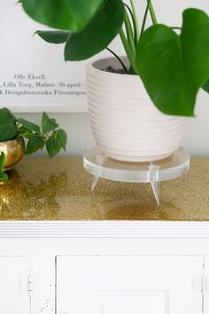 --DIY Lucite Plant Stand with Tapered Legs