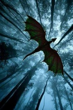forest dragon in flight - Drachen - Animals Mythical Creatures Art, Magical Creatures, Fantasy Artwork, Fantasy World, Dark Fantasy, Fantasy Forest, Fantasy City, Fantasy House, Fantasy Map