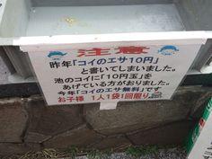 コイの餌10円