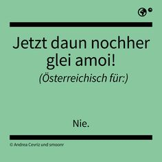 """Jetzt daun nochher glei amoi!"" - Österreichisch für: Nie. The Words, Manado, Me Quotes, Funny Quotes, Funny Memes, Learn English, True Stories, Fun Facts, Meant To Be"