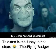 42 Best Voldy Memes Images Harry Potter Memes Harry Potter