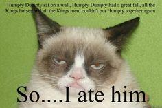 grumpy cat | quickmeme »