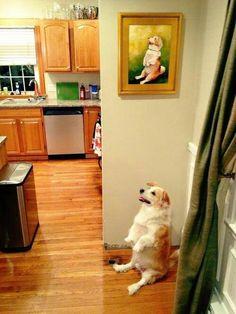 Doggie Self-Portrait