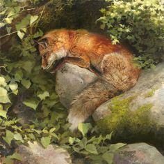 Escape by a Hare By Bonnie Marris...the hare will eventually become invisible in this realm of faerie.