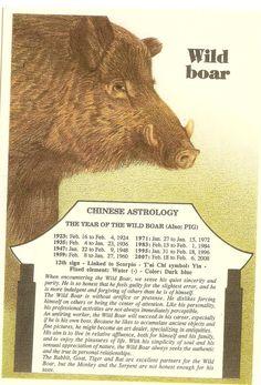 Zodiac Unlimited Chinese astrology postcard: Wild Boar