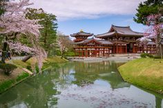 https://flic.kr/p/EdvA6R | Byōdō-in, Uji, Kyoto | Byōdō-in is a Buddhist temple in the city of Uji in Kyoto Prefecture, Japan. It is jointly a temple of the Jōdo-shū (Pure Land) and Tendai-shū sects. The main building in Byōdō-in, the Phoenix Hall consists of a central hall, flanked by twin wing corridors on both sides of the central hall, and a tail corridor. The central hall houses an image of Amida Buddha. The roof of the hall displays statues of the Chinese phoenix, called hōō in…