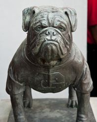 Statue of Georgia Bulldogs mascot Uga at Sanford Stadium.