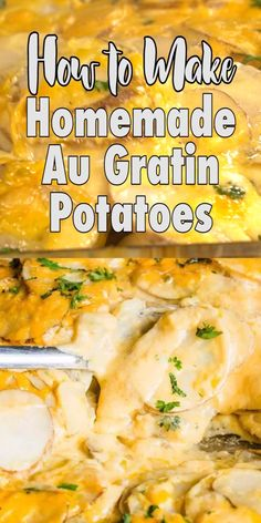 Homemade Au Gratin Potatoes Potatoes Au Gratin are a classic potato side dish that you can make more easily than you may think! Creamy homemade white sauce with melted cheddar make these cheesy potatoes a recipe the family will love. Homemade Au Gratin Potatoes, Homemade Scalloped Potatoes, Potato Gratin Recipe, Canned Potatoes, Potatoe Casserole Recipes, Au Gratin Sauce Recipe, Easy Cheesy Potatoes, Scalloped Potato Recipes, Potato Side Dishes