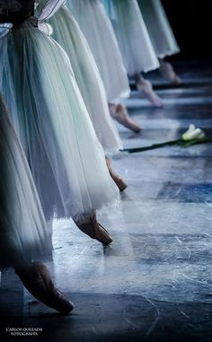 Ballet: Another perspective. Mexico National Dance Company. Photography Carlos Quezada. Giselle. Corps de Ballet of the CND Mexico