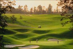 Chateau Elan Golf Course in Braselton, GA