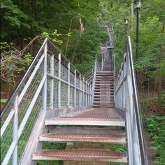Check out the Dundurn Stairs Twitter account - all our great staircases tweet in Hamilton!  I'm that shining beacon of metallic awesome where Dundurn Street meets the Niagara Escarpment. #hamont #DundurnStairs #HamOntStairs