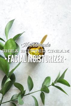 Homemade Shea Butter Cream Facial Moisturizer