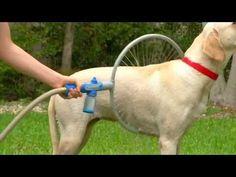 Woof Washer 360 - YouTube