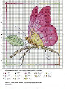 Gallery.ru / Foto # 6 - Mariposas de la Federación Rusa - mamnew