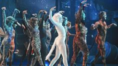 "CATS at the Paramount Theatre, Aurora, Illinois. ""A genuinely spectacular show"" by Chicago Tribune. Paramount Theater, Cats Musical, Chicago Tribune, Dance Moves, Theatre, Musicals, Entertaining, Illinois, Aurora"