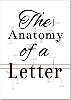 The Anatomy of a Letter, free typography printable on Crafting Fingers
