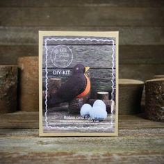 DIY kit- robin and eggs