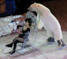 Moscow Circus via AnimaNaturalis España. --Shared to DESERT HEARTS Animal Compassion -  Phoenix, Arizona --3/31/2014 https://www.facebook.com/desertheartsphoenix