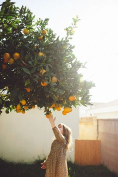 orange, tree, and cute image Family Photography, Art Photography, Fashion Photography, Lifestyle Fotografie, Little People, Belle Photo, Life Is Beautiful, In This Moment, Pretty