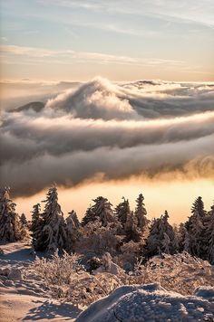 winter wonderland - Massif-Central, France