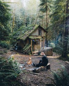 """Back To Nature on Twitter: """"No internet, no TV, no phone...... no problem.🙂 Agree?… """""""