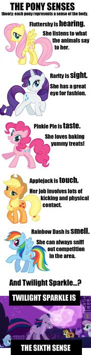 So I, the blog owner, just made this.I'm not sure if it qualifies as a headcanon or theory or what because I just COMPLETELY MADE IT UP OFF THE TOP OF MY HEADI hope it at least makes you laugh, though! (Originally I was going to put Rarity as Taste because she has taste in clothing, and Pinkie Pie was going to be Sight because she sure is a sight!)