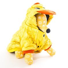Quilted Duck dress up for your pampered pooch  www.calvinknine.com
