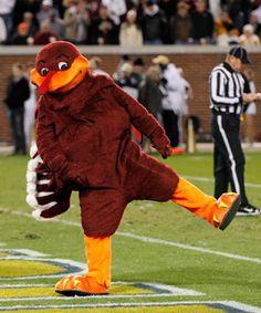 College football bowls. (Virginia Tech mascot HokieBird)