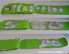 The very hungry caterpillar book Preschool Literacy, Kids Learning Activities, Spring Activities, Kindergarten Activities, Preschool Crafts, The Hungry Caterpillar Story, Very Hungry Caterpillar Printables, Caterpillar Book, Chenille Affamée