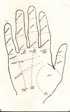 How to read your palm