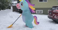 Snow day sillies: From bike-lane skiers to shoveling unicorns, Metro Vancouver basks in snow Shoveling Snow, Bad Drivers, Weather News, U Turn, Skiers, Cross Country Skiing, Snowboarding, Unicorns, Vancouver