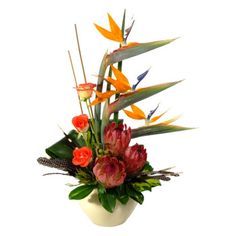 Out of Africa: A unique African ethnic flower arrangement with Strelizias, Proteas, Orange roses, guinea fowl feathers, porcupine quills & greenery! Beautiful Flower Arrangements, Floral Arrangements, Beautiful Flowers, African Flowers, Out Of Africa, Orange Roses, Farm Gardens, Flower Centerpieces, Tropical Flowers
